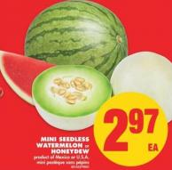 Mini Seedless Watermelon or Honeydew