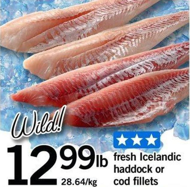 Fresh Icelandic Haddock Or Cod Fillets