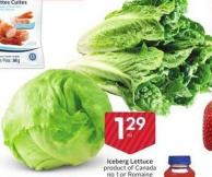 Iceberg Lettuce Product of Canada No 1 or Romaine