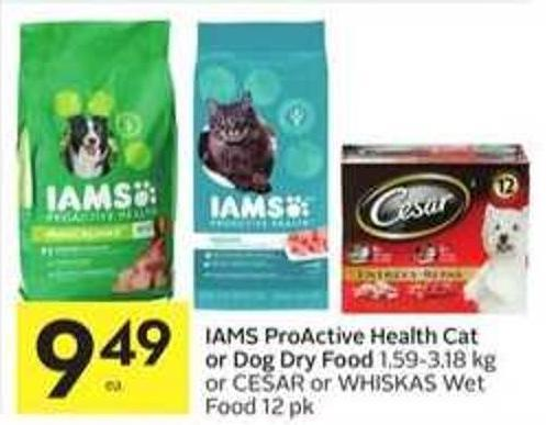 Iams Proactive Health Cat or Dog Dry Food