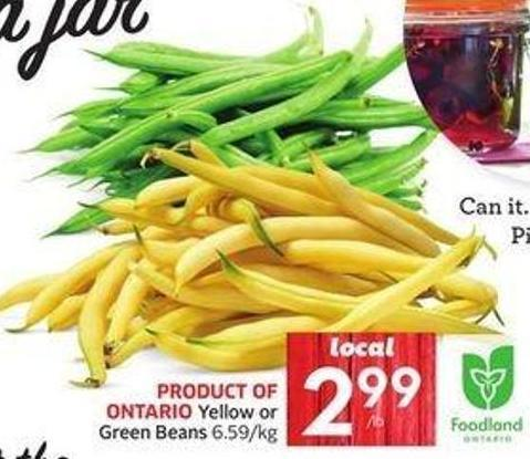 Yellow or Green Beans 6.59/kg
