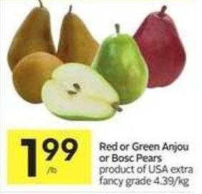 Red or Green Anjou or Bosc Pears