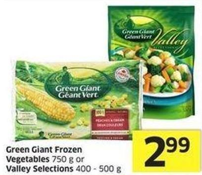 Green Giant Frozen Vegetables 750 g or Valley Selections 400 - 500 g