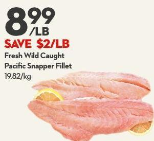 Fresh Wild Caught Pacific Snapper Fillet
