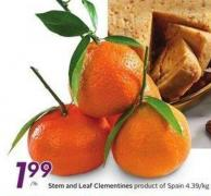 Stem and Leaf Clementines