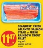 Seaquest Fresh Atlantic Salmon Steak or Fresh Rainbow Trout Fillet