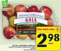 Local Ontario Apples