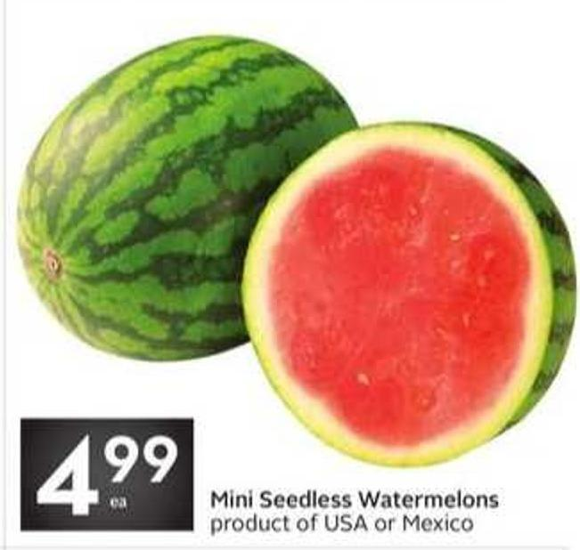 Mini Seedless Watermelons Product of USA or Mexico
