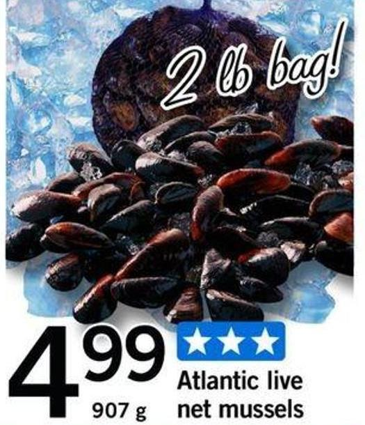 Atlantic Live Net Mussels - 907 g