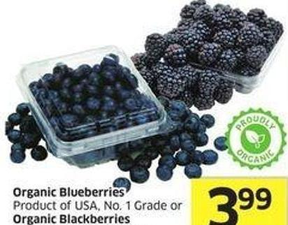 Organic Blueberries Product of USA - No. 1 Grade or Organic Blackberries