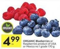 Organic Blueberries or Raspberries Product of USA or Mexico No 1 Grade 170 g