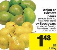 Anjou Or Bartlett Pears Or Bosc Pears