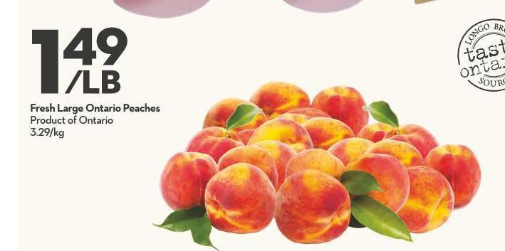 Fresh Large Ontario Peaches Product of Ontario