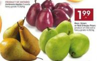 Bosc - Green or Red D'anjou Pears