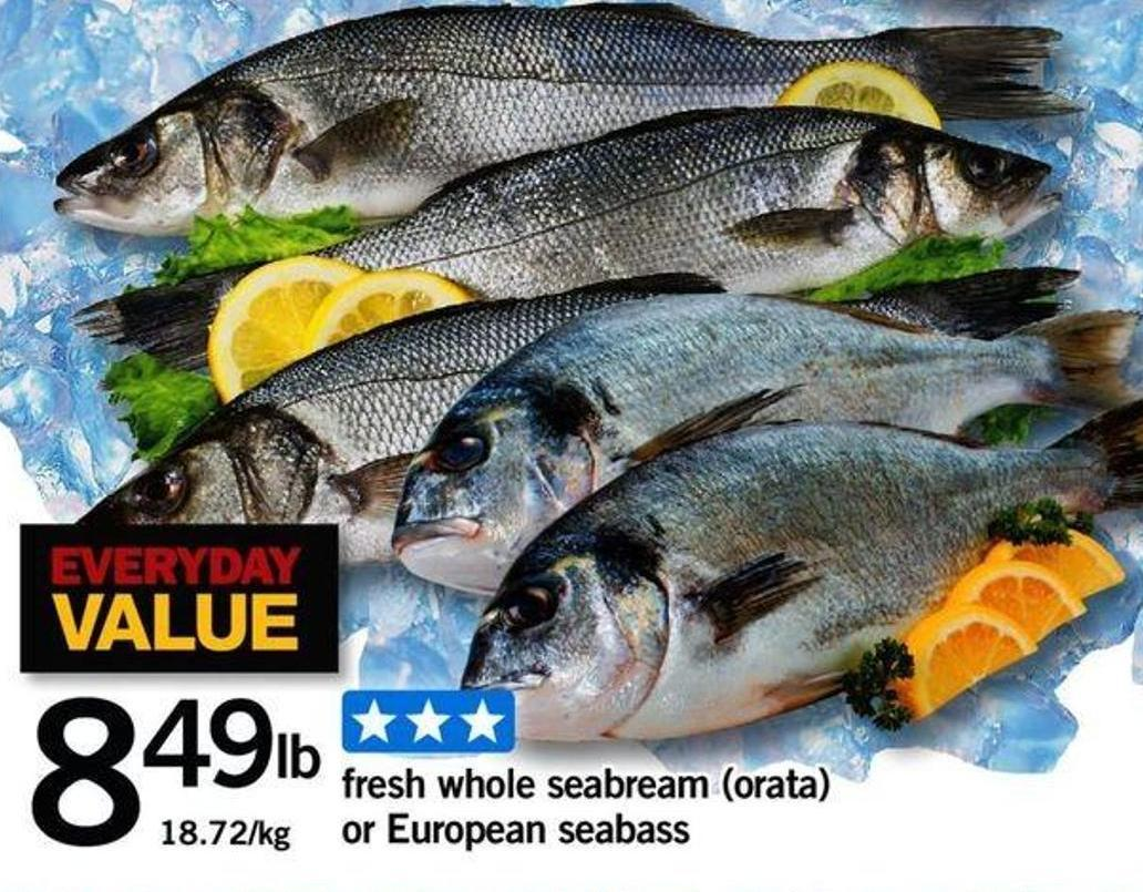 Fresh Whole Seabream (Orata) Or European Seabass