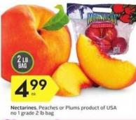 Nectarines - Peaches or Plums