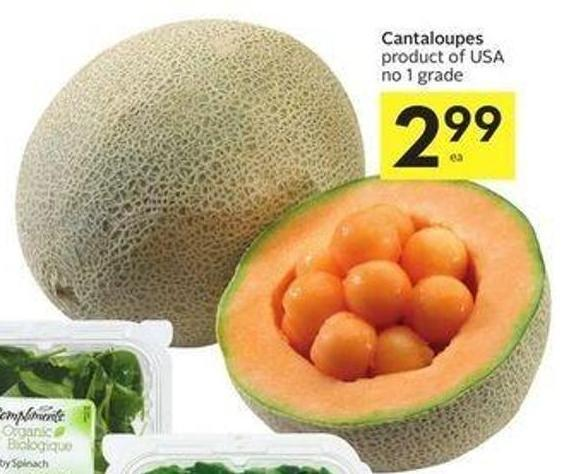 Cantaloupes Product of USA No 1 Grade