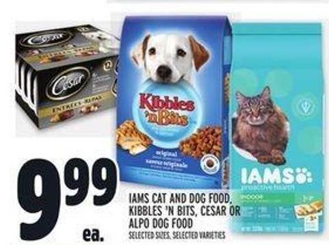 Iams Cat and Dog Food - Kibbles 'N Bits - Cesar or Alpo Dog Food