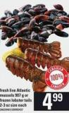 Fresh Live Atlantic Mussels - 907 G Or Frozen Lobster Tails - 2-3 Oz Size