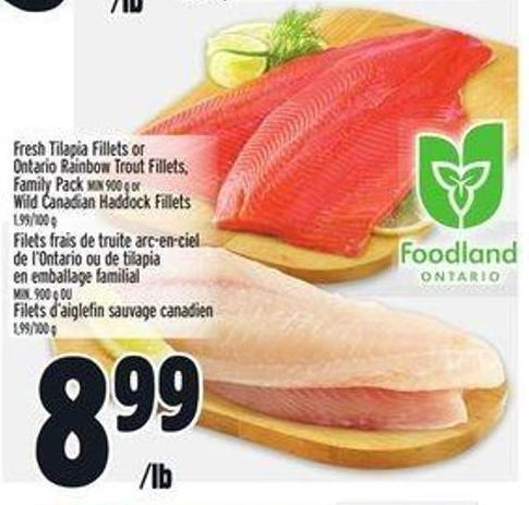 Fresh Tilapia Fillets or Ontario Rainbow Trout Fillets - Family Pack Min 900 g or Wild Canadian Haddock Fillets 1.99/100 g