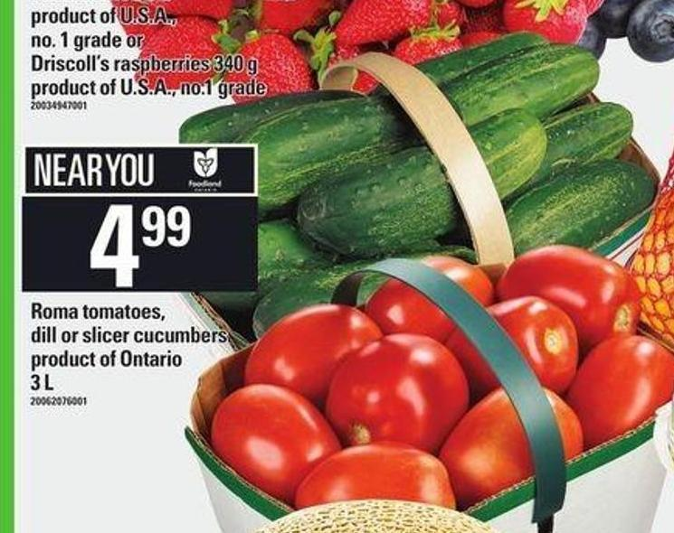 Roma Tomatoes - Dill Or Slicer Cucumbers - 3 L