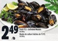 Fresh P.e.i. Cultivated Mussels