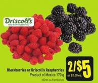 Blackberries or Driscoll's Raspberries Product of Mexico 170 g