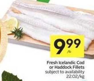 Fresh Icelandic Cod or Haddock Fillets