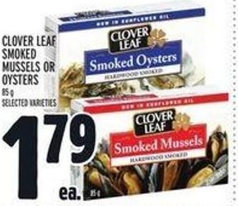 Clover Leaf Smoked Mussels Or Oysters