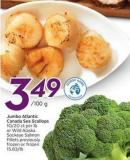 Jumbo Atlantic Canada Sea Scallops
