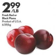 Fresh Red or  Black Plums