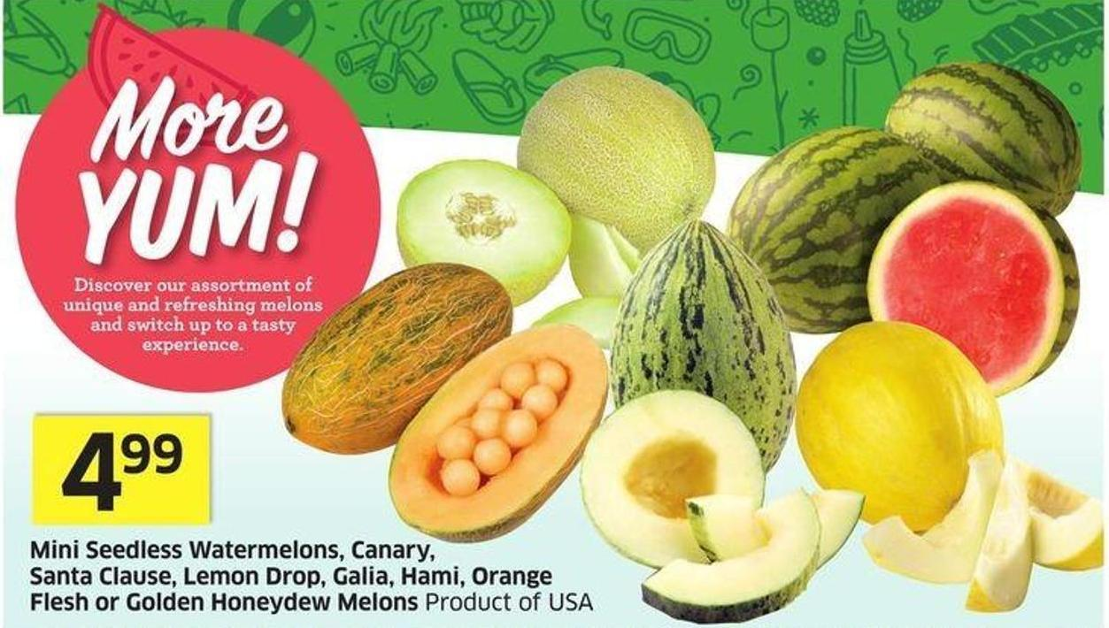 Mini Seedless Watermelons - Canary - Santa Clause - Lemon Drop - Galia - Hami - Orange Flesh or Golden Honeydew Melons Product of USA