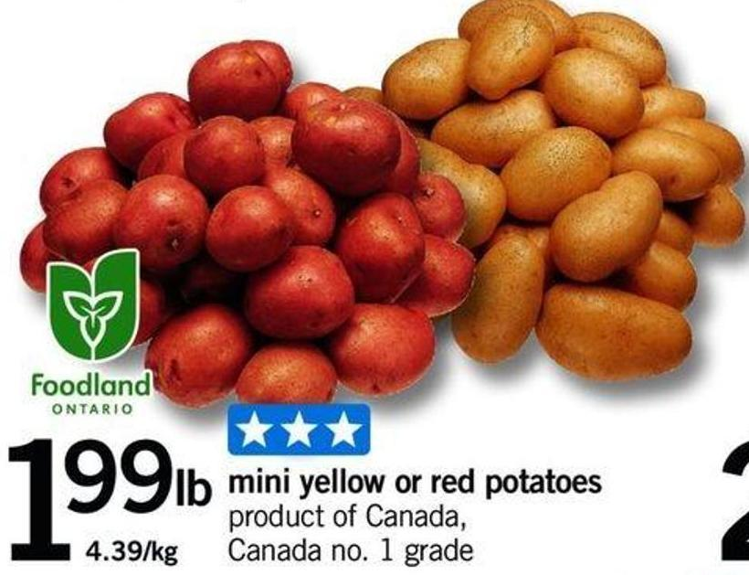 Mini Yellow Or Red Potatoes