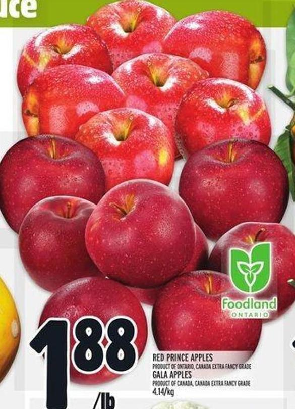 Red Prince Apples Product Of Ontario - Canada Extra Fancy Grade Gala Apples Product Of Canada - Canada Extra Fancy Grade