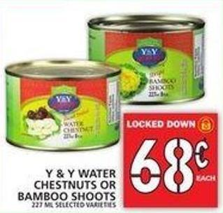 Y & Y Water Chestnuts Or Bamboo Shoots