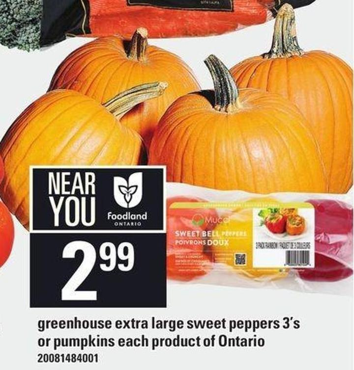 Greenhouse Extra Large Sweet Peppers 3's Or Pumpkins Each Product Of Ontario
