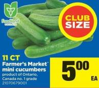 Farmer's Market Mini Cucumbers - 11 Ct