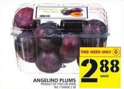 Angelino Plums