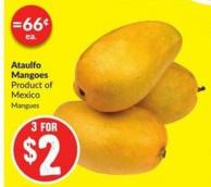 Ataulfo Mangoes Product of Mexico Mangues
