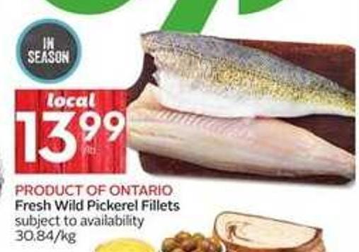 Product Of Ontario Fresh Wild Pickerel Fillets