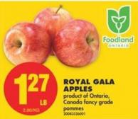 Royal Gala Apples - 2.80/kg