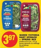 Queen Victoria Baby Spinach or Spring Mix - 312 g