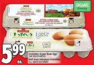 Irresistibles Organic Brown Eggs