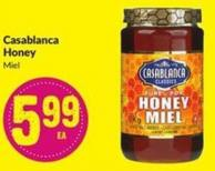 Casablanca Honey