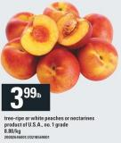 Tree-ripe Or White Peaches Or Nectarines