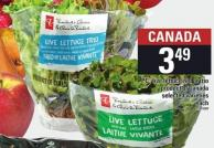 PC Live Lettuce Red Or Trio