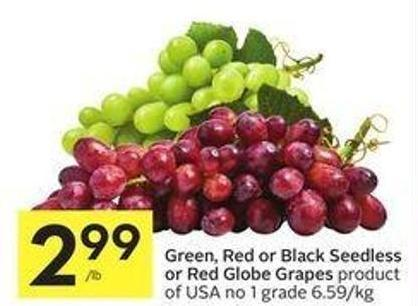 Green - Red - Black Seedless or Red Globe Grapes