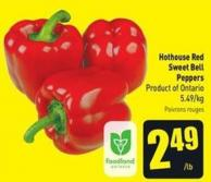 Hothouse Red Sweet Bell Peppers - 5.49/kg