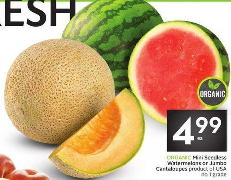 Organic Mini Seedless Watermelons or Jumbo Cantaloupes