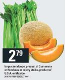 Large Cantaloupe - Product Of Guatemala Or Honduras Or Celery Stalks